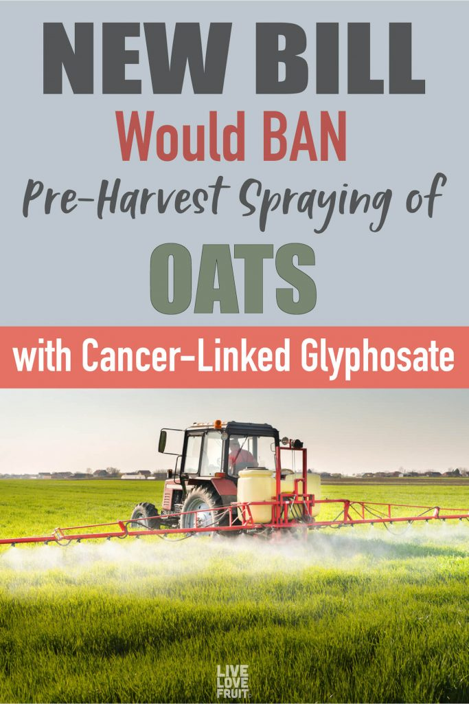 Tractor Spraying Herbicide on Field with Text - New Bill Would Ban Pre-Harvest Spraying of Oats with Cancer-Linked Glyphosate