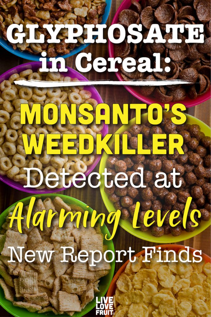 Different Types of Cereal Arranged in Diffferent Colored Bowls with Text - Glyphosate in Cereal: Monsanto's Weedkiller Detected at Alarming Levels, New Report Finds