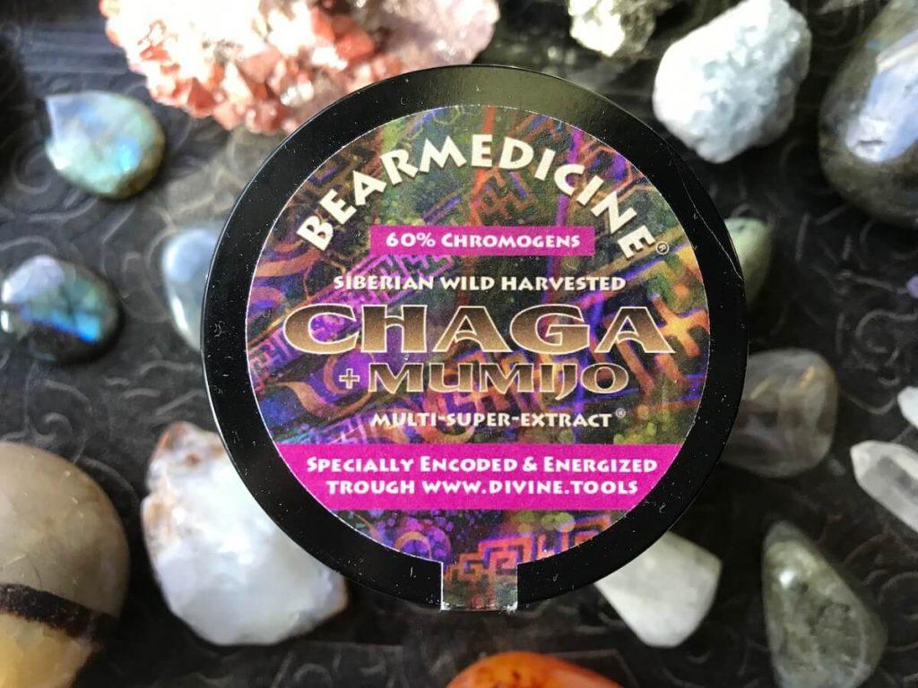 bear medicine chaga product