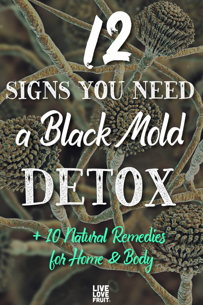microscopic view of black mold spores with text - 12 signs you need a black mold detox + 10 natural remedies for home & body