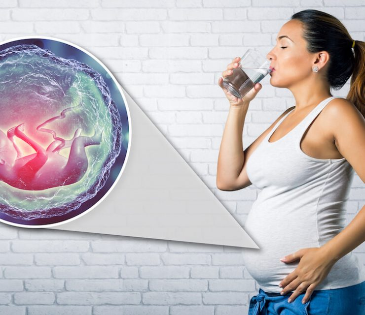 pregnant woman drinking water with magnification of fetus inside stomach