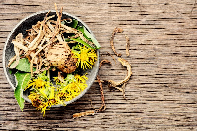 elecampane dried root and fresh flower on wood table