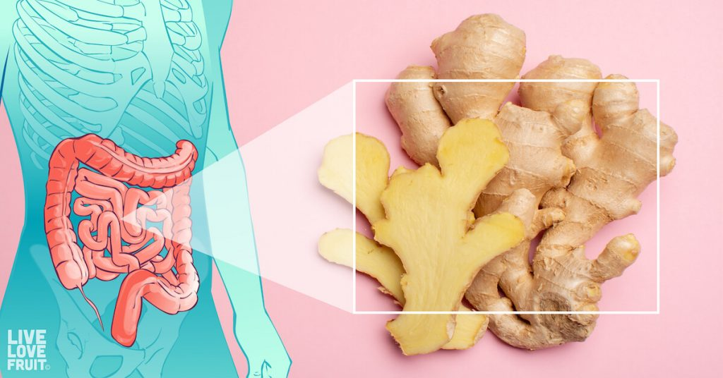 Fresh ginger on pink background with vector shaped body on left hand side illuminating the intestines.