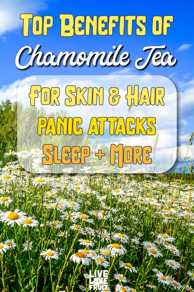 field of chamomile flowers and blue sky with text - top benefits of chamomile tea for skin & hair, panic attacks, sleep & more