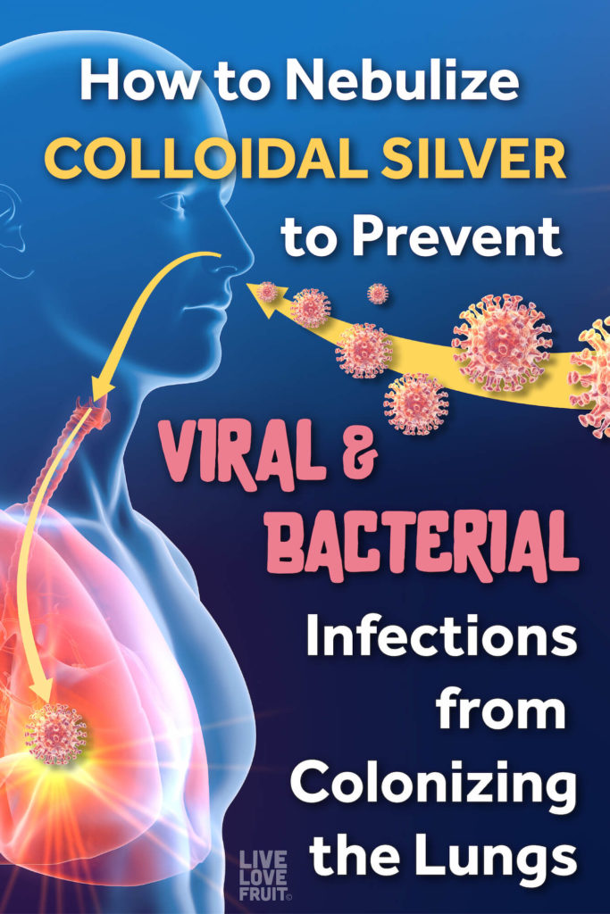 3D illustration of man inhaling pathogens with text - how to nebulize colloidal silver to prevent viral & bacterial infections from colonizing the lungs