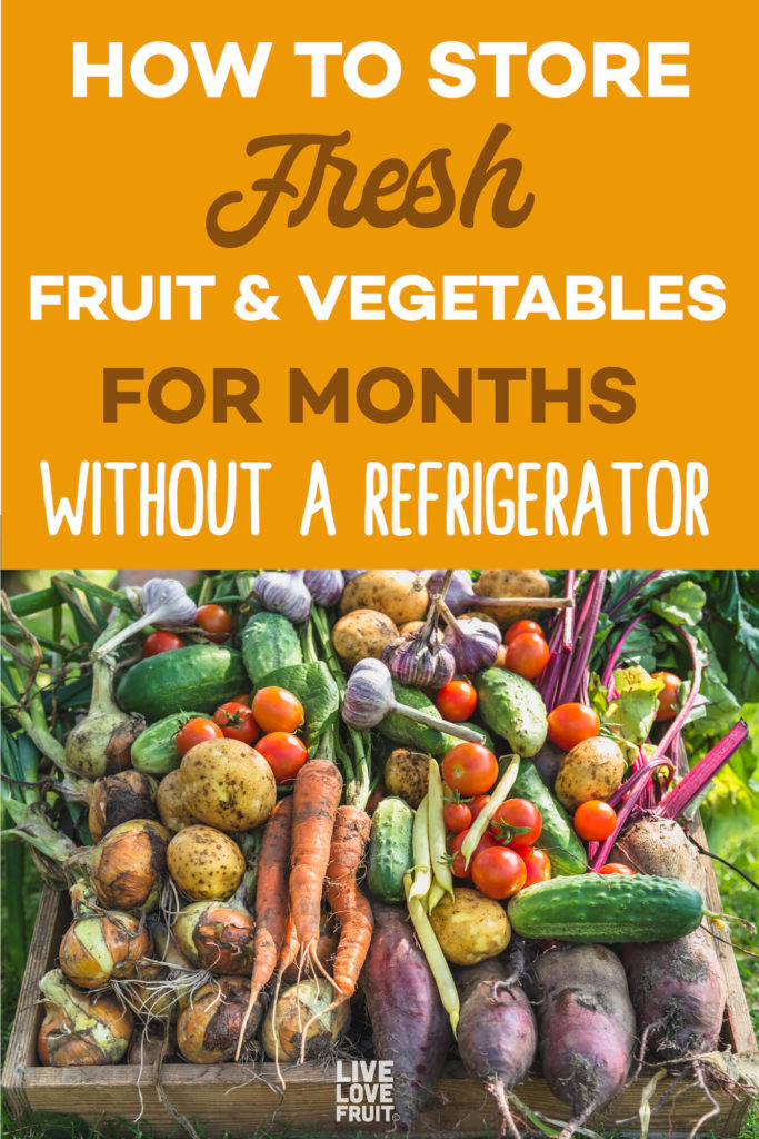 fresh harvest from garden with text - how to store fresh fruit and vegetables for months without a refrigerator