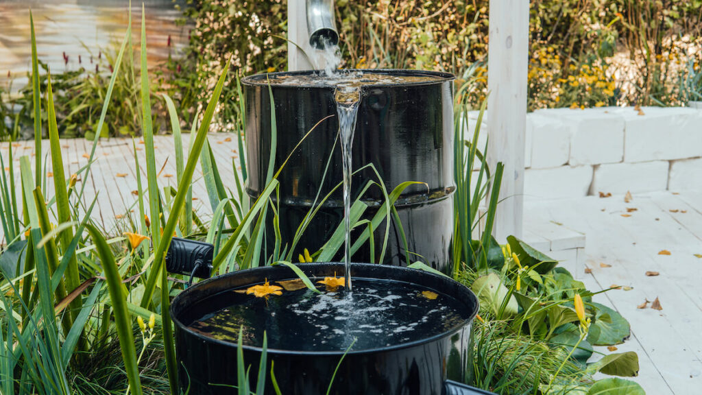Rain water flows from a drainpipe to the metal barrel in garden in summer