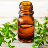 thyme essential oil with fresh thyme on wooden background